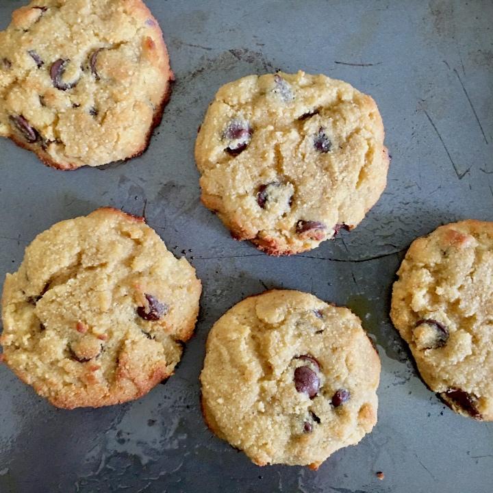Coconut Flour Chocolate Chip Cookies  Grain-free