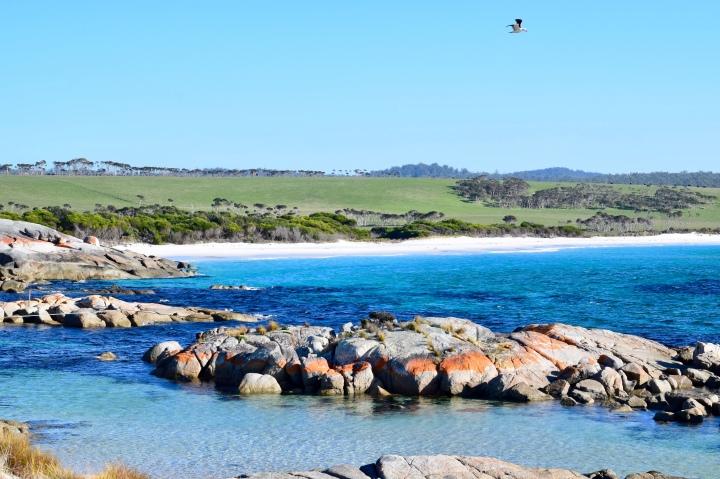 Tasmania, Australia | Great EasternDrive